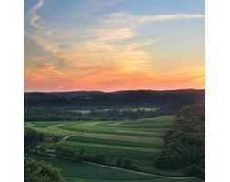 JP London CNVSQM2208Gallery wrap canvas 2in Thick Heavyweight Gallery wrap canvas Wall Art Napa Morning Sun Rolling Hills Wine anyone at 22in by 22in