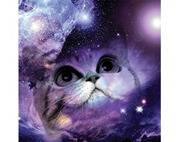 JP London CNVSQM2252Gallery wrap canvas 2in Thick Heavyweight Gallery wrap canvas Wall Art Space Cat Galaxy Nebula Stars Kids at 22in by 22in