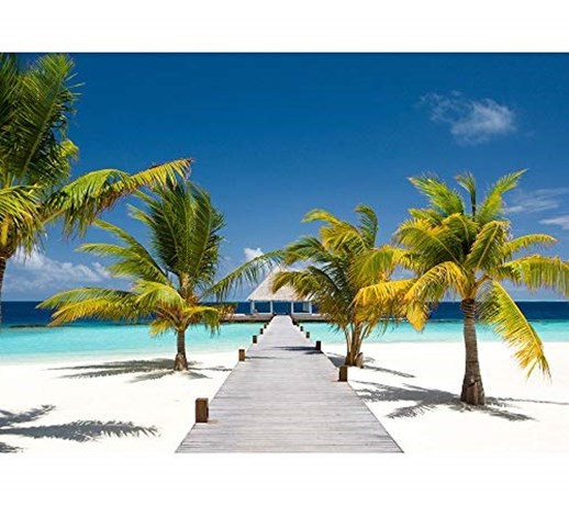 Sea beach blue color of palm trees scenery wall mural wallpapers