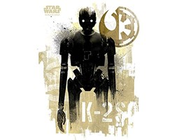 Star Wars Rogue One k-2s0 Grunge Stampa su Tela, Multicolore, 60 x 80 cm