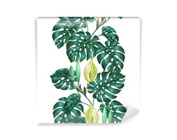 Carta da Parati Seamless Pattern Con Foglie Monstera. Immagine Decorativa Di Piante Tr...