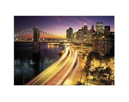 Fotomurale NYC lights Nat.Geographic multicolor 368 x 254 cm