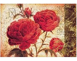 Eurographics JO2073 Stampa artistica Red Yearning di Joadoor, 70x100 cm