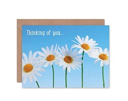 Wee Blue Coo Thinking of You Daisy Flower Nature Photograph Blank Greetings Card