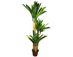 Geko 135 cm 1 Pezzo Artificiale Dracaena Extralarge destinatari pianta Multicolore