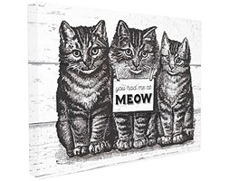 Stupell Industries You Had Me at Meow Gatti – Wall Art, Tela,, 40.64 x 3.81 x 50.8 cm