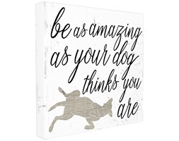 Stupell Industries Amazing AS Your Dog Thinks Stretched Wall Art, Proudly Made in USA, Tela,, 60.96x 3.81x 60.96cm