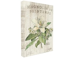 Stupell Industries Francese magnolie in Primavera XXL Stretched Wall Art, Proudly Made in USA, Tela,, 76.2x 3.81x 101.6cm